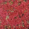 'Claveles' 2000 · Óleo sobre lienzo · 96x116 · Colección particular