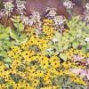 'Jardín' 2002 · Óleo sobre lienzo · 81x100 · Colección particular