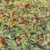 'Manzano' 1991 · Óleo sobre lienzo · 46x65 · Colección particular