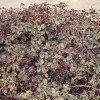 'Moras' 1993 · Óleo sobre lienzo · 65x81 · Colección particular