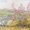'Paisaje con olivos' 1998 · Óleo sobre lienzo · 65x81· Colección particular