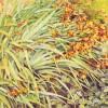 'Plantas' 2001 · Óleo sobre lienzo · 65x70 · Colección particular