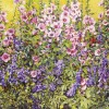 'Plantas con flores rosa y violeta' 2002 · Óleo sobre lienzo · 89x116 · Colección particular