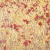 'Trigo y amapolas' 2002 · Óleo sobre lienzo · 65x81 · Colección particular