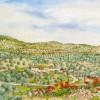 'Olivos y amapolas' 2009 · Óleo sobre lienzo · 60x73 · Colección particular